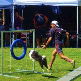 Obstáculos de agility para parques caninos